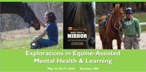 Explorations in Equine Assisted